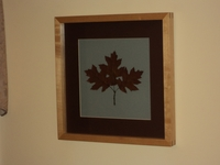 Image Northern Pin Oak Botanical Print